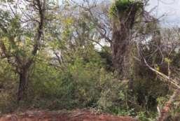 Terreno à venda  em Atibaia/SP - Estância San Remo REF:4664