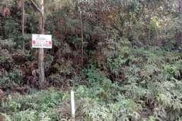 Terreno à venda  em Atibaia/SP - Jardim Cerejeiras REF:8112
